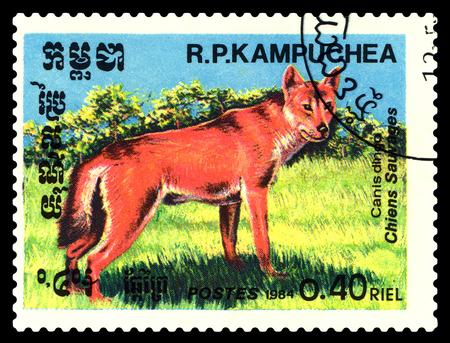 poststempel: STAVROPOL, RUSSLAND - 24. Juni 2017: Ein Briefmarke Gedruckt in der Kambodscha zeigt Canis Dingo (Canis Lupus Dingo), circa 1984
