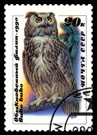 STAVROPOL, RUSSIA - June 23, 2017: a stamp printed by Tanzania shows  bird Owl (Bubo bubo),  circa 1990