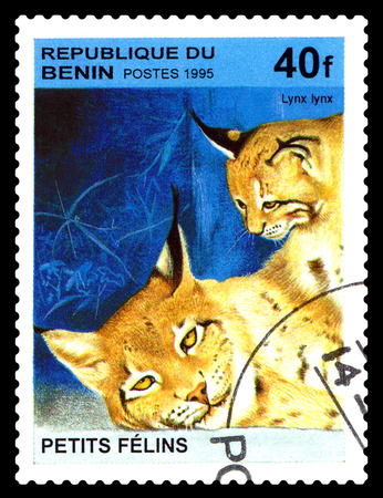 STAVROPOL, RUSSIA - August 07, 2017: A Postage Stamp Printed in the Benin shows Lynx (Lynx lynx), circa 1995