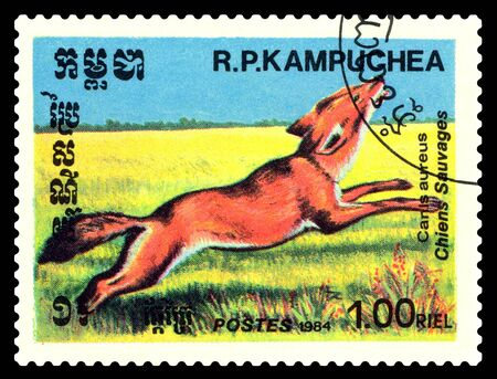 STAVROPOL, RUSSIA - August 08, 2017 : A Postage Stamp Printed in the Cambodia  Shows  Aureus (Canis aureus), circa 1984 Editorial