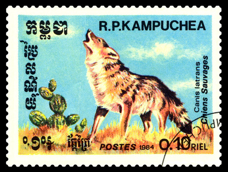 STAVROPOL, RUSSIA - August 08, 2017 : A Postage Stamp Printed in the Cambodia  Shows  the dog barking (Canis latrans), circa 1984