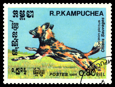 STAVROPOL, RUSSIA - August 08, 2017 : A Postage Stamp Printed in the Cambodia  Shows  Hyenic dog (Lycaon pictus), circa 1984