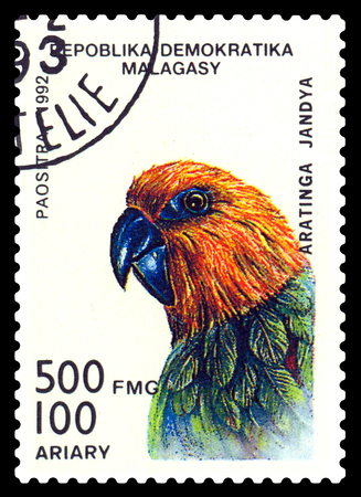 STAVROPOL, RUSSIA - August 18, 2017: A stamp printed by Malagasy shows bird an   parrot  Aratinga Jandia, circa 1992 Editorial