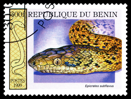 STAVROPOL; RUSSIA - October; 30; 2017: A stamp printed in Benin show yellow boa snake (epicrates subflavus); circa 1999 Editorial