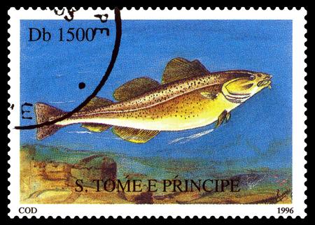 STAVROPOL, RUSSIA - November 21.2017: A stamp printed in Sao Tome and Principe  shows Cod fish (Gadus morhua),  circa 1996