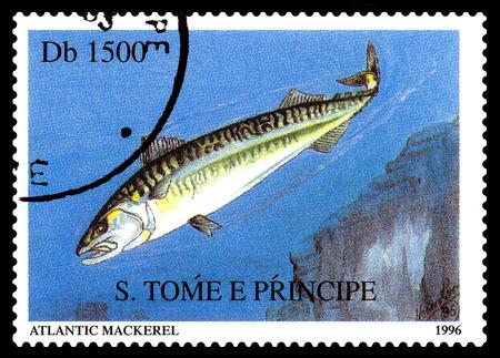 STAVROPOL, RUSSIA - November 21.2017: A stamp printed in Sao Tome and Principe  shows Atlantic Mackerel  (Scomber scombrus),  circa 1996 Editorial