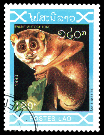 STAVROPOL, RUSSIA - December 21. 2017: a stamp printed by Laos  show  lemur Loris grasilis,  circa 1993