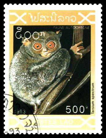 STAVROPOL, RUSSIA - December 21. 2017: a stamp printed by Laos  show  Tarsium spectrum (Tarsius tarsier),  circa 1993