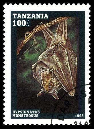 STAVROPOL, RUSSIA - February 16, 2018: A stamp printed by Tanzania shows Hypsignatus monstrosus, circa 1995