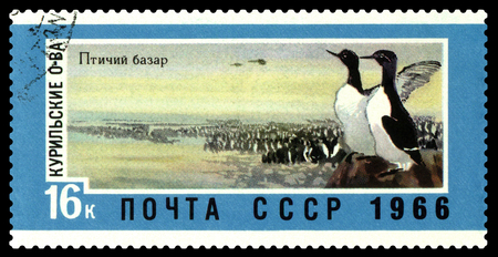 STAVROPOL, RUSSIA - February 24, 2018: a stamp printed by Russia shows  bird market, Kurile Islands.,   circa 1966