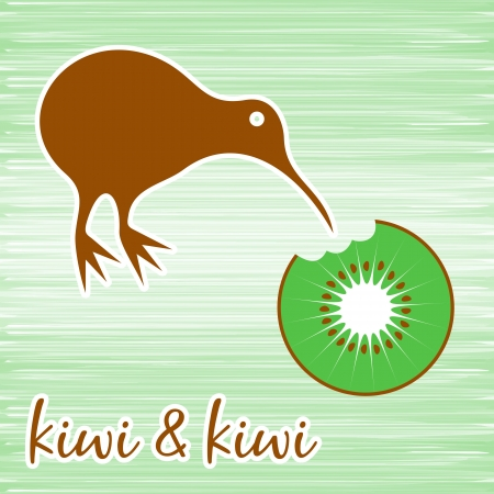 Kiwi bird eating kiwi fruit on green background