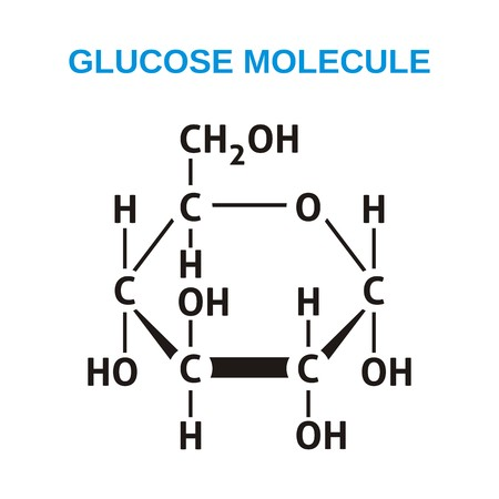グルコース分子の黒の構造式  イラスト・ベクター素材