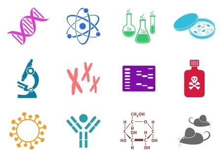 biologia molecular: Juego de doce coloridos iconos de la ciencia de la biolog�a molecular Vectores