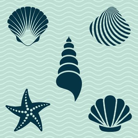 다양한 바다 조개와 불가사리 실루엣의 집합 일러스트