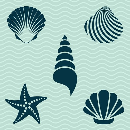 scallop shell: Set of various sea shells and starfish silhouettes