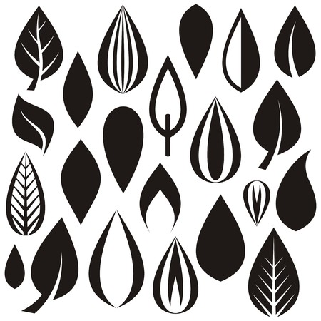 vegetate: Set of various simple leaves on white background Illustration