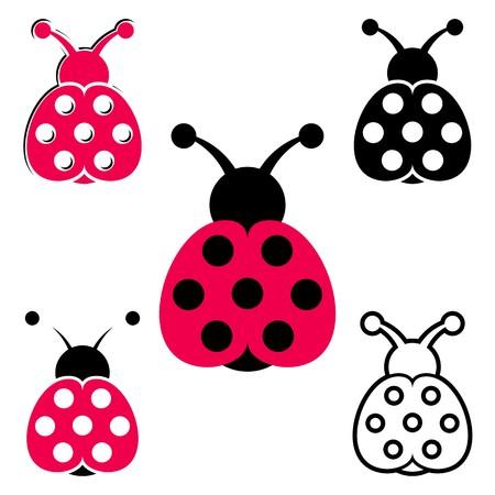 Set of various vector seven spot ladybird icons