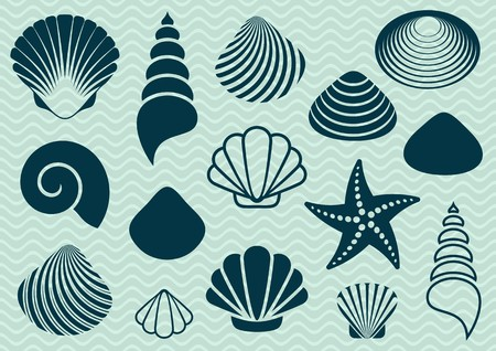 Set of various sea shells and starfish silhouettes