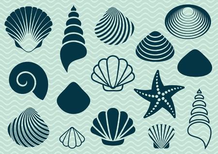 estrella de mar: Conjunto de varias conchas de mar y estrellas de mar siluetas