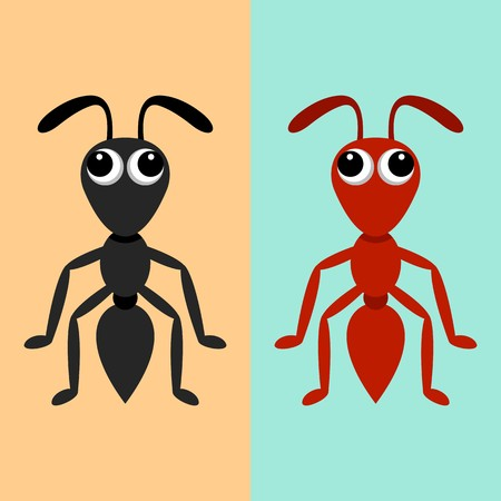 formicidae: Black and red ant cartoon characters vector illustration