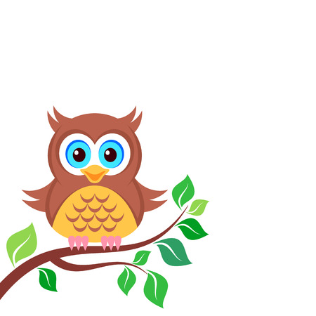 Cute colorful owl on the branch white background