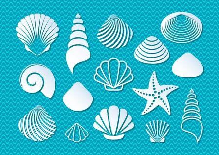 shellfish: White sea shells and starfish icons with shadows Illustration