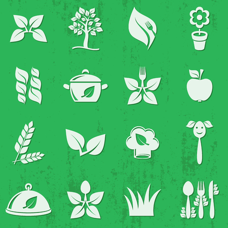 farm fresh: Vector vegetarian organic food icons set isolated