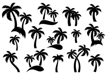 Vector palm tree silhouette icons on white background Çizim