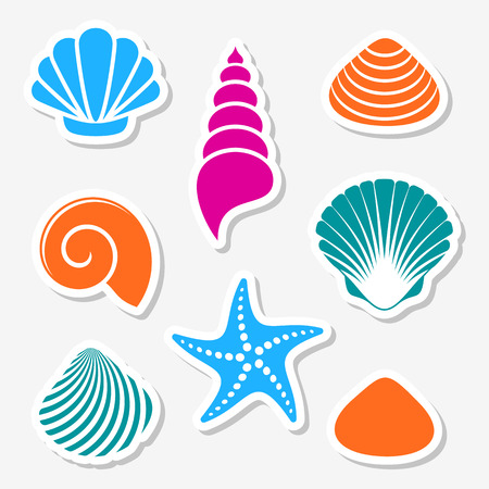 Vector sea shells and starfish labels with shadows.
