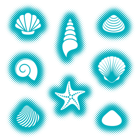 Illustration of sea shells and starfish icons.