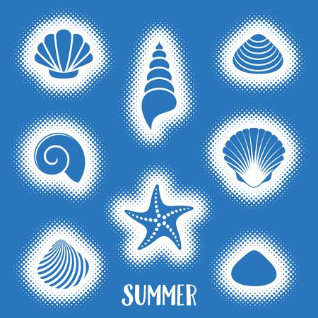 Vector summer card with sea shells