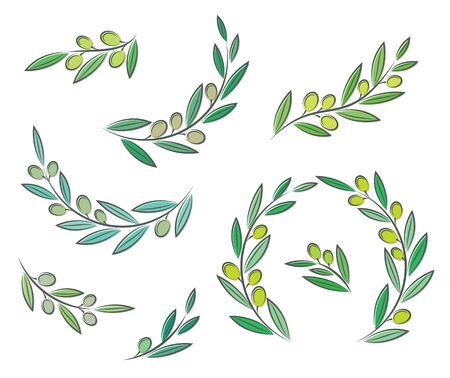 Vector olive branch set with leaves and olives