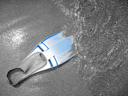 Blue diving fin, wet by the water on a black and white shore photo