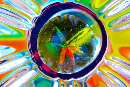 This is what can happen when you try to shoot a glass marble, an explosion of beautiful colored reflections. photo