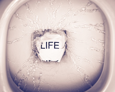 ever felt like throwing your life into the toilet? photo