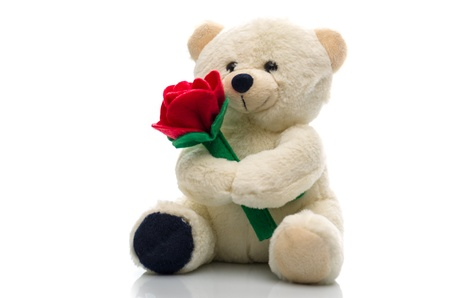 amour: Soft plush teddy bear toy clutching a single red rose in its arms for an anniversary or Valentines celebration
