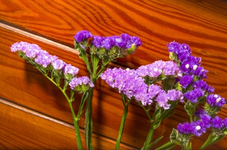 Deux inflorescences de belles fleurs pourpres color�s sur un fond de planches de bois naturel avec un motif de fibre de bois d�coratif avec atelier pour votre message