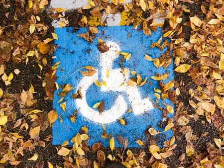Close up Blue and White Handicapped Accessible Sign on the Ground Surrounded by Dried Leaves.