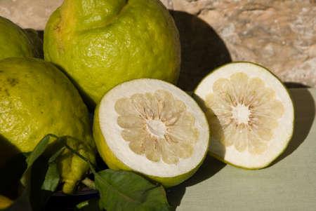 citrus aurantium: cedar lemon slices Stock Photo