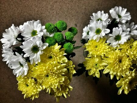isolated: View of two isolated bouquets of flowers Stock Photo