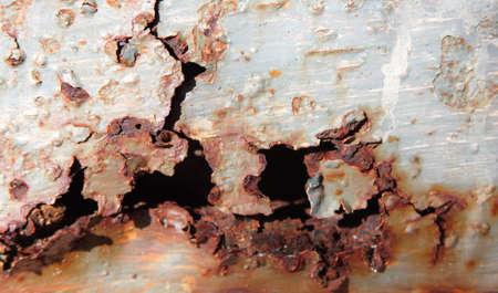 rust: rust alive Stock Photo