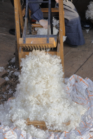 carding: carding wool