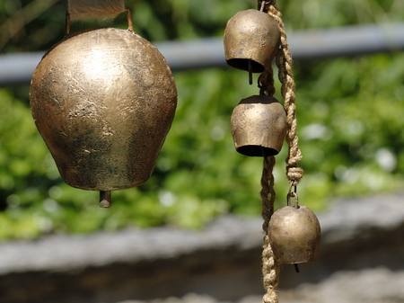 Bells for cows hanging on the farm