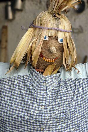 espantapajaros: a funny scarecrow dressed in a shirt