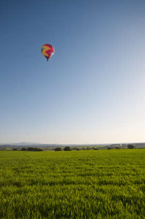 A multicoloured hot air balloon rising in the early morning sunlight into a blue sky over a wheatfield  photo