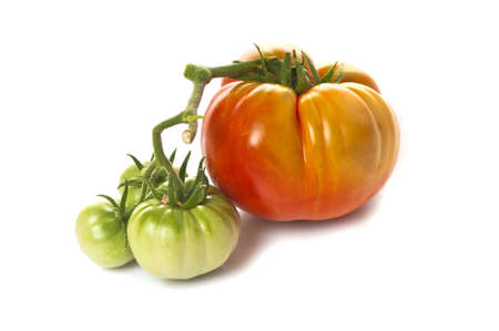 misshapen: Large ripe red heirloom tomato in the same bunch as three small unripe green ones   On white