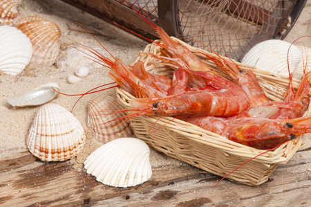 crab pot: Raw red prawns with a maritime background of sand, seashells, a driftwood board and a crab pot.