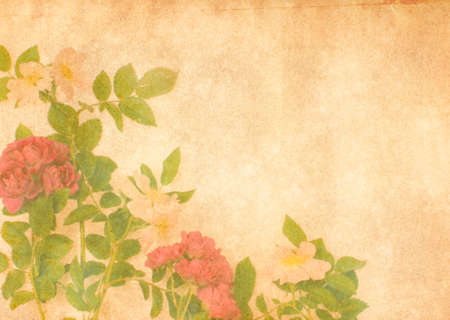 notelet: Photo illustration with mixed faded wild rose flowers and leaves in the corner of an antique brown textured background. Room for text  in the style of a notelet or greeting card Stock Photo