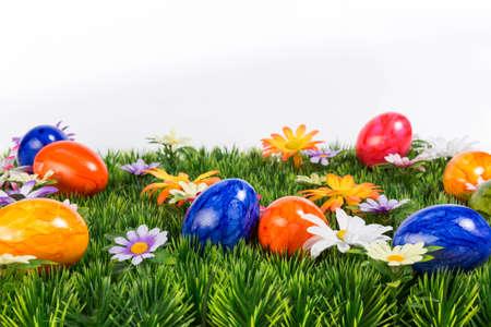 cape mode: Blumenwiese mit bunten Ostereier im Landscape-Modus