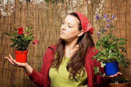 ガーデニング、彼女は彼女がかかりますどの植木鉢を決定する竹垣の前で、別の植物の 2 つの植木鉢を保持している女性 写真素材